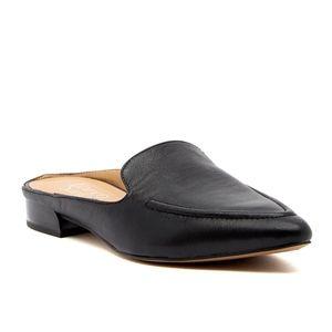 Franco Sarto Sela pointy toe black mules